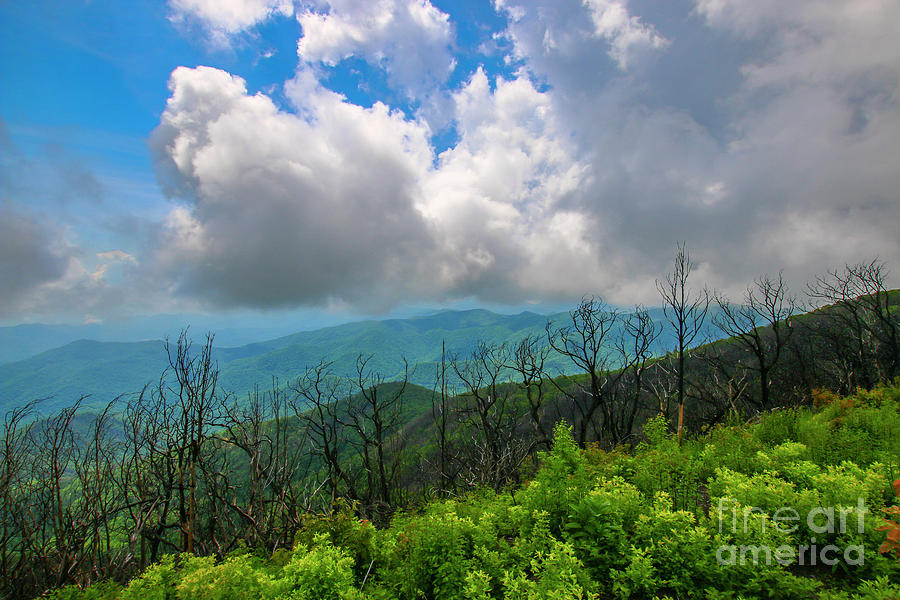 Cloudy Mountain View by Tom Claud