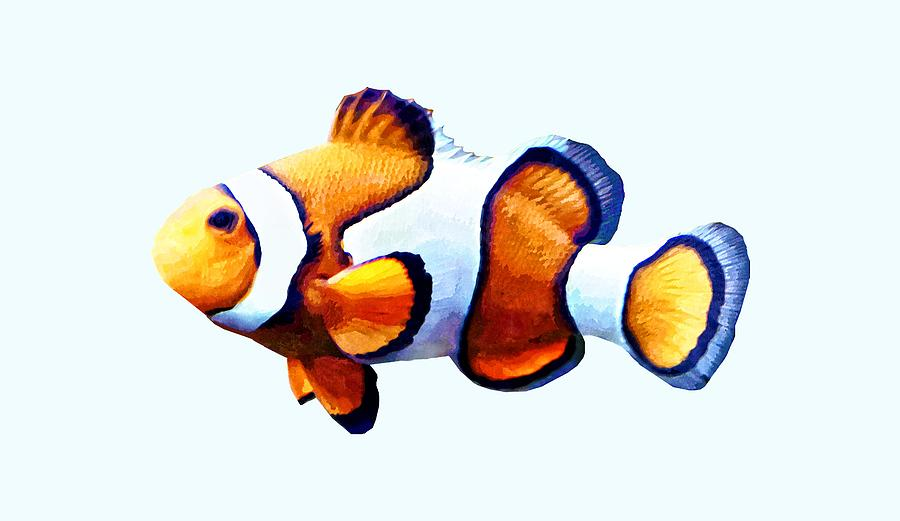 Clownfish Cutout by Susan Savad
