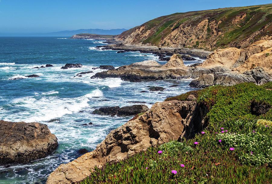 Coast at Bodega Head by Carolyn Derstine