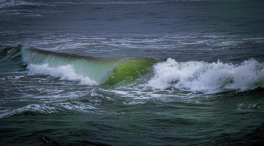 Coast Curl by Bill Posner