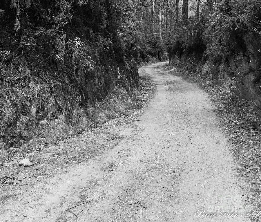 Coastal camino 1 BW by Barry Bohn