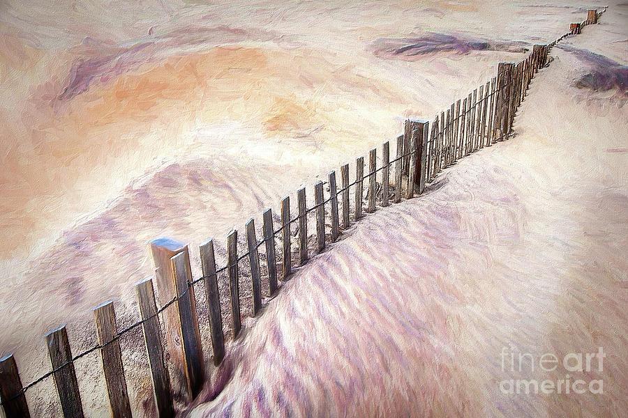 Coastal Conservation AP by Dan Carmichael