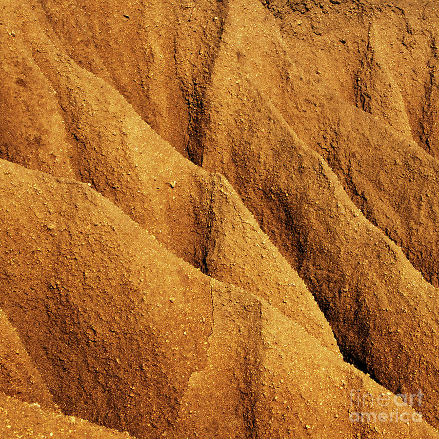 Coastal Erosion - Organic Patterns and Textures by Charmian Vistaunet