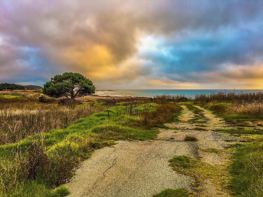 Coastal Road Photograph