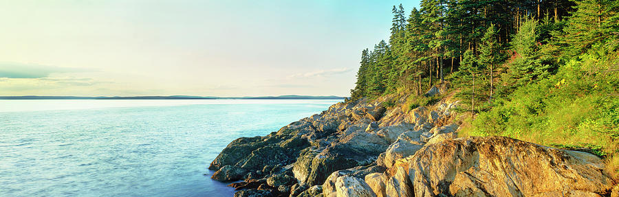 Coastline Acadia National Park Maine Photograph By Panoramic Images