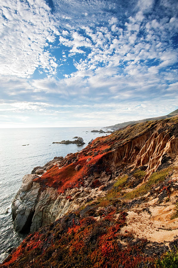 Scenic Photograph - Coastline At Soberanes by Doug Steakley