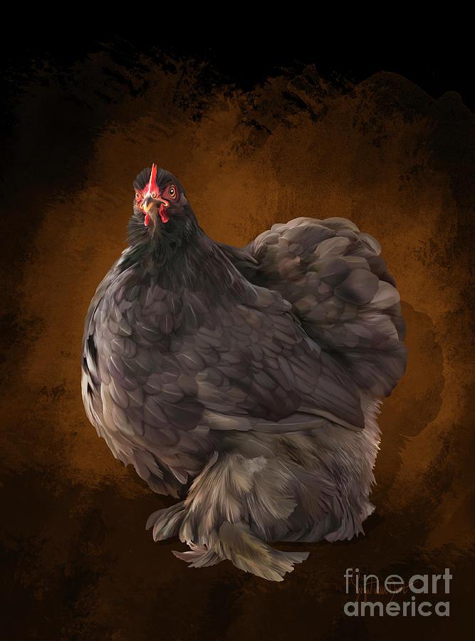 Chicken Digital Art - Cochin bantam hen chocolate by Sigrid Van Dort