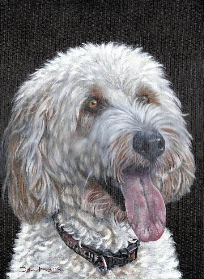 Cockapoo by John Neeve