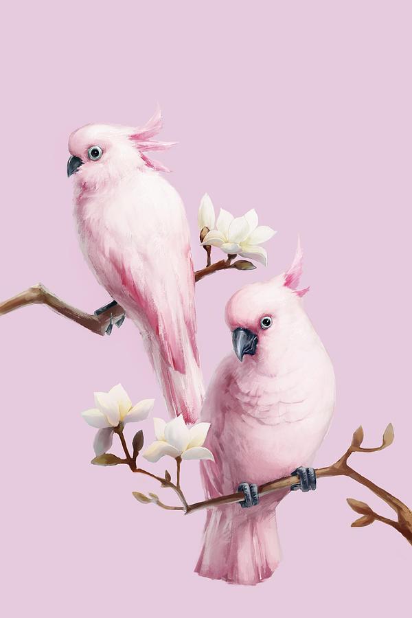Cockatoos And Magnolia Digital Art by Bji/blue Jean Images