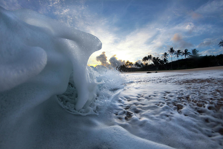 Coconut Meringue by Sean Davey