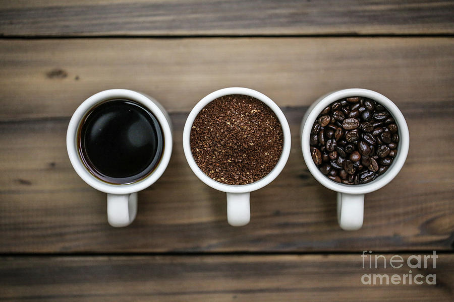 Coffee Photograph - Coffee Circle of Life by Eddie Hernandez
