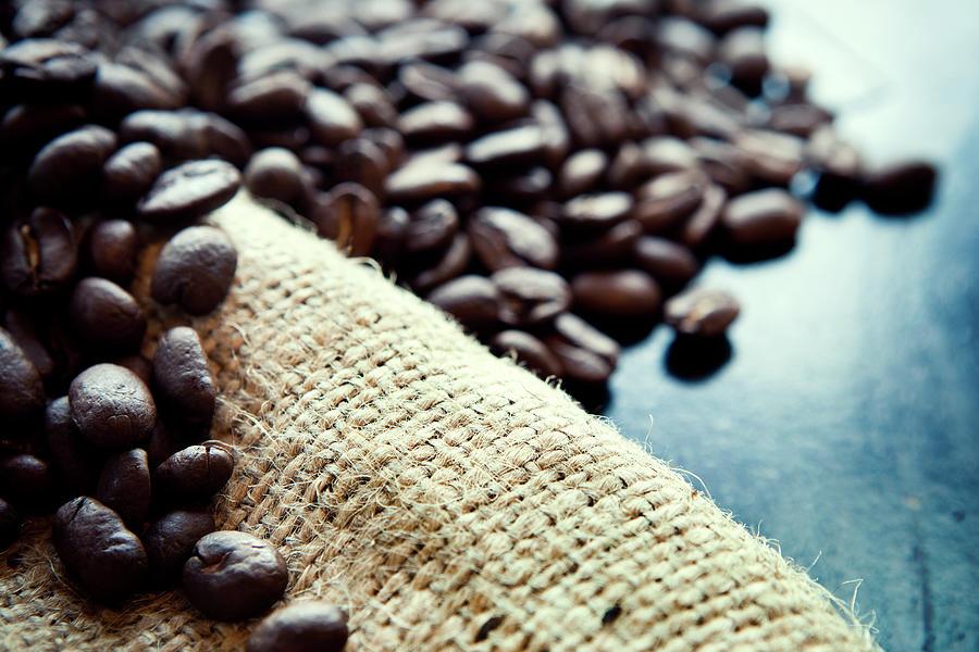 Coffee Crop On Rustic Burlap Photograph by Ryanjlane