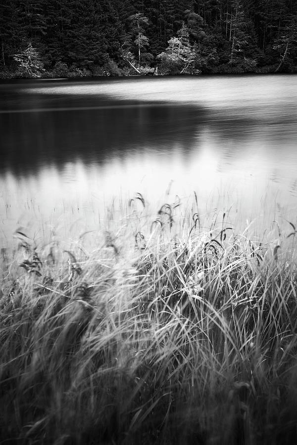 Coffenbury Lake by Whitney Goodey