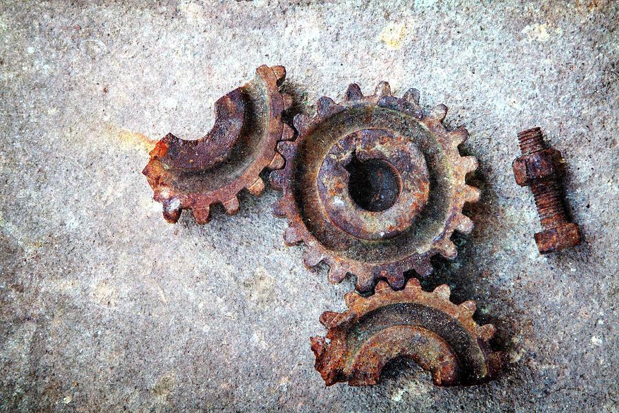 Cogwheel Photograph by Rudolf Vlcek