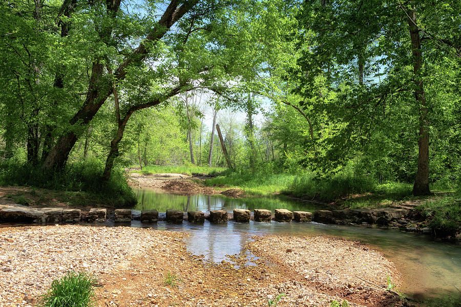 Colbert Creek Stepping Stones by Susan Rissi Tregoning