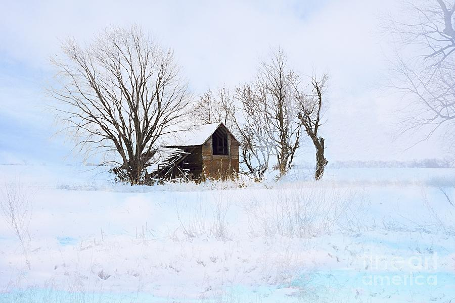 Cold and Lonely by Larry Ricker