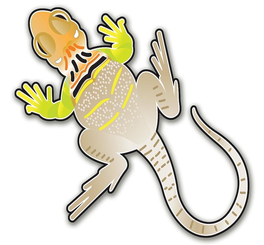 Collared Lizard by Gene Bollig