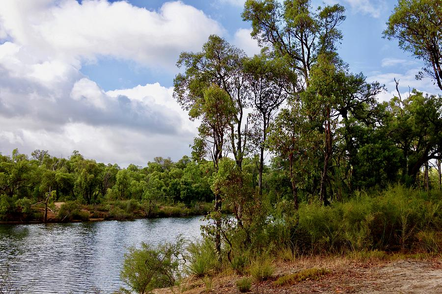 Collie River WA. by Hans Peter Goepel