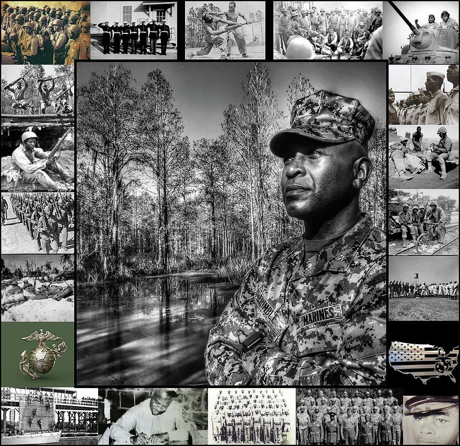 Colonel Trimble Collage by Al Harden