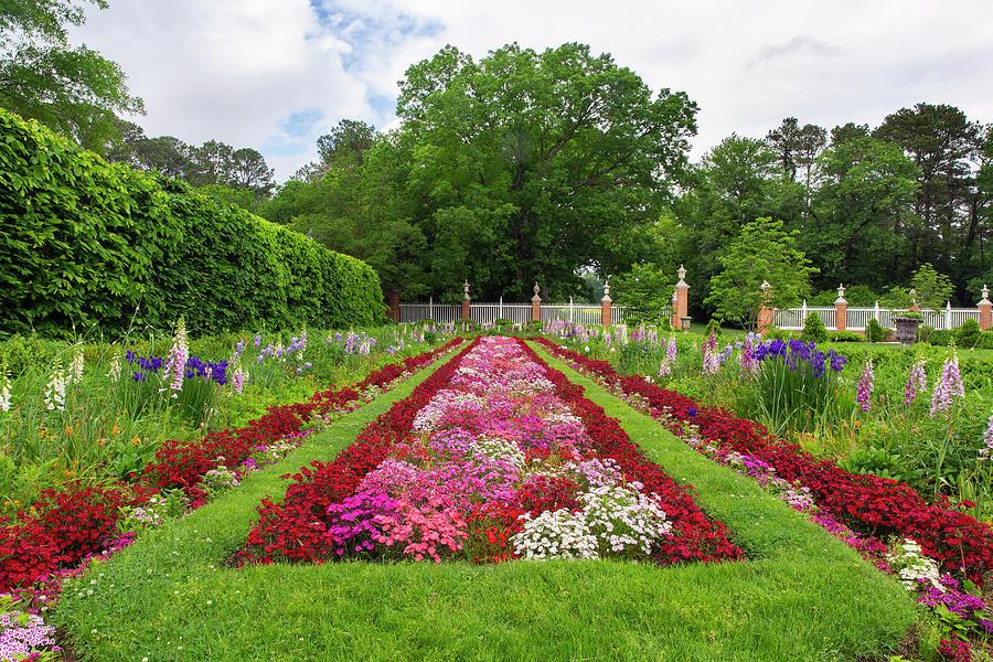 Colonial Flower Garden In Spring Photograph