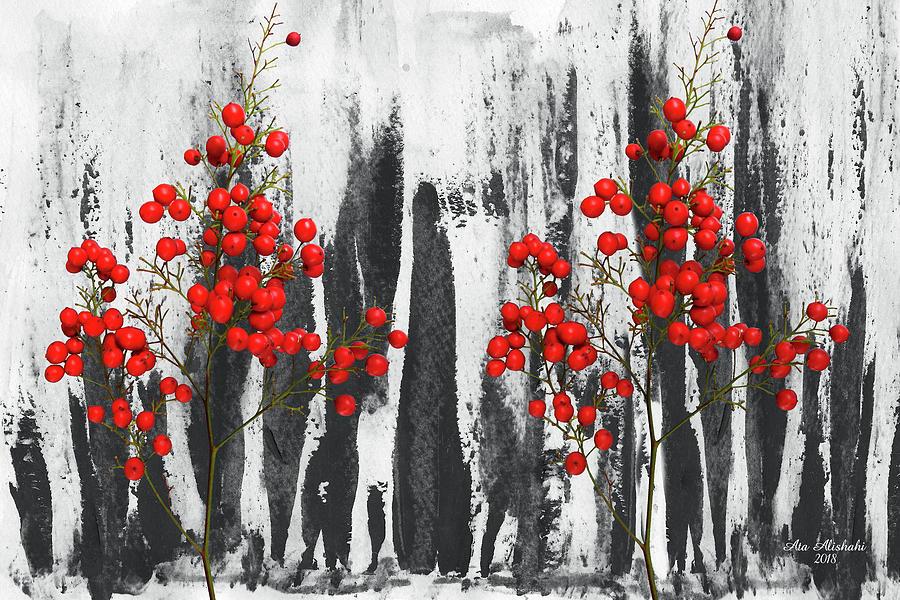 Abstract Mixed Media - Color And Black And White by Ata Alishahi