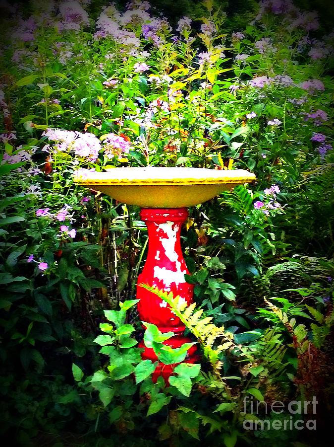 Color Birdbath With Flowers Photograph