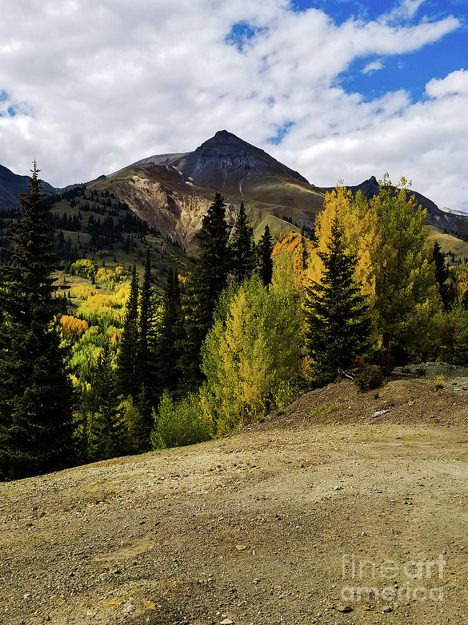 Color in the Mountains by Elizabeth M
