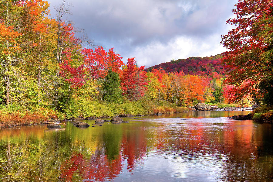 Color on the River by David Patterson