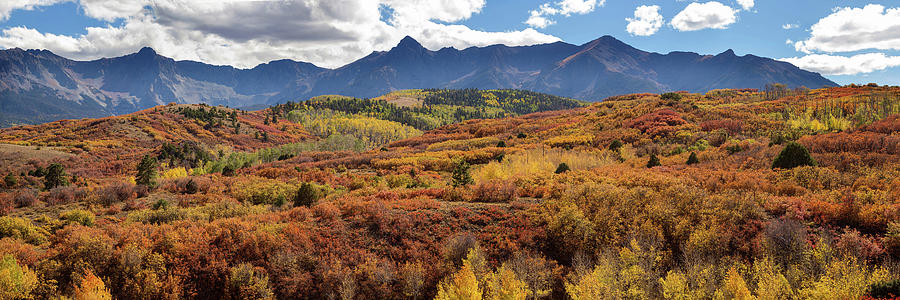 Ridgeway Photograph - Colorado Autumn Panorama Colorful Bliss by James BO Insogna