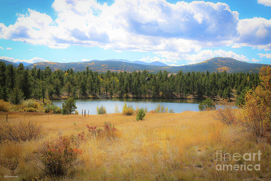 Colorado Autumn by Veronica Batterson
