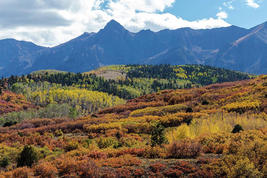 Ridgeway Photograph - Colorado Color Bonanza by James BO Insogna