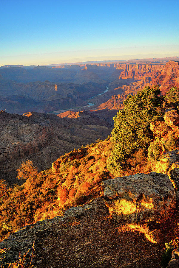 Colorado River from Desert View Point  by Chance Kafka