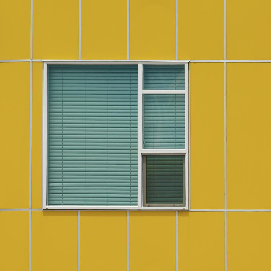 Colorado Windows 11 by Stuart Allen