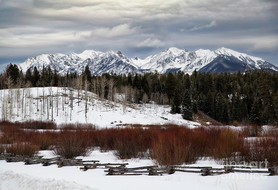 Colorado Winter Scene by Jaime Miller