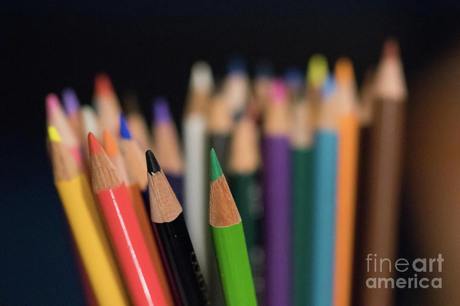 Color Photograph - Colored Pencils by Nicki Hoffman