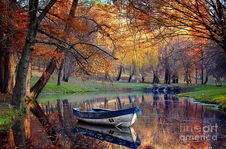 Beauty Photograph - Colorful Autumn Landscape.nature by Iancu Cristian