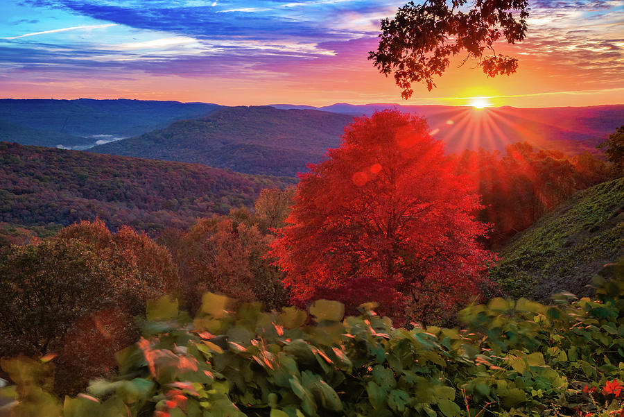 Colorful Autumn Sunrise at Artist Point - Arkansas Boston Mountains by Gregory Ballos