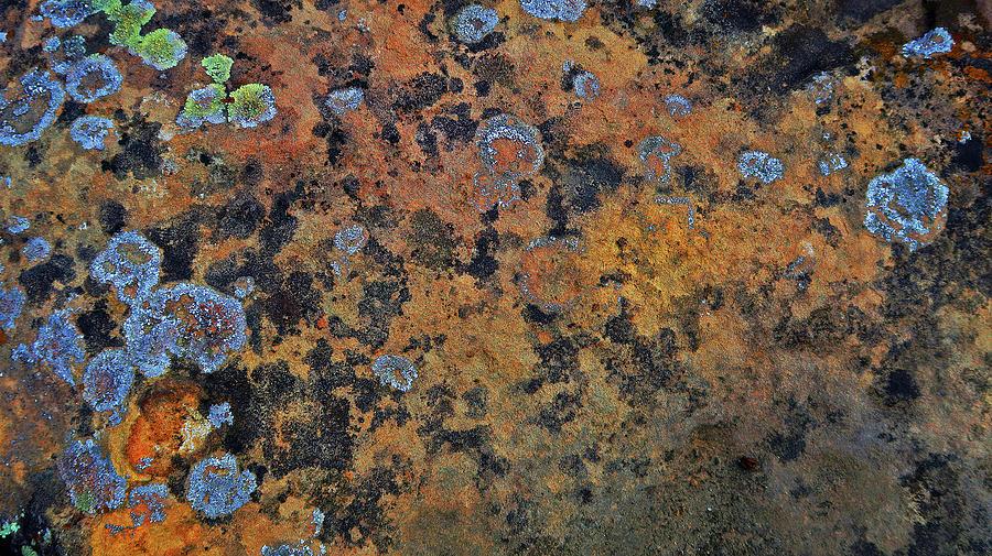 Colors In A Boulder Photograph