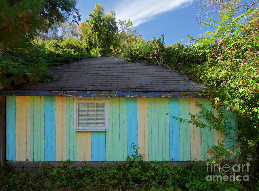 Colorful Building In The Bushes by Mark Miller