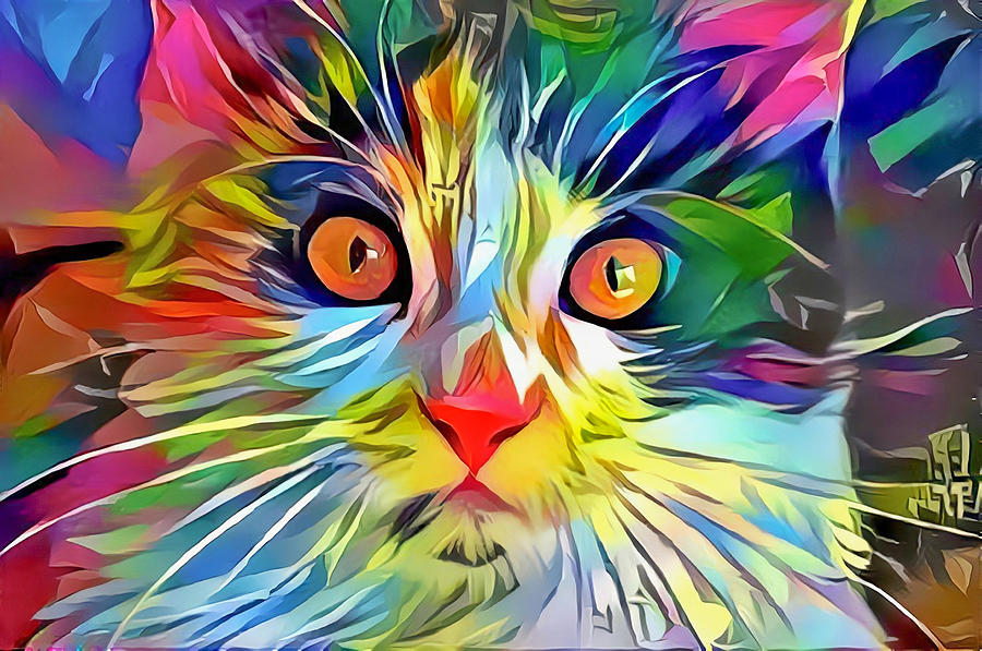 Colorful Calico Cat by Don Northup