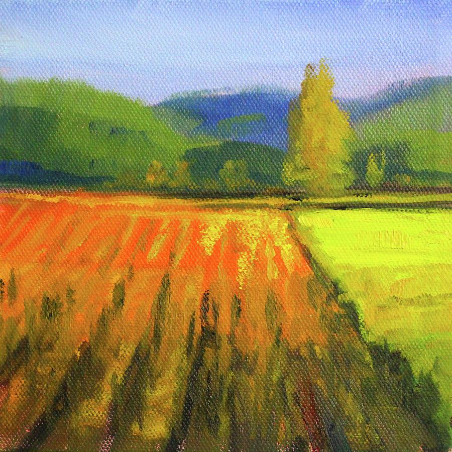 Colorful Fields Landscape by Nancy Merkle