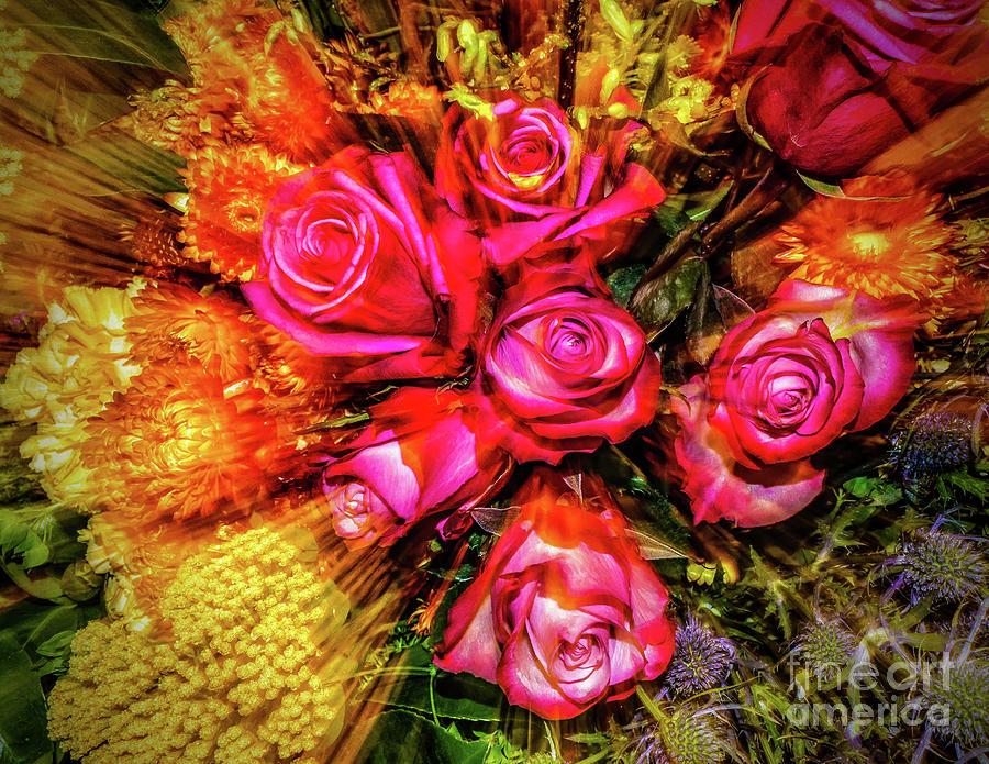 Colorful Floral Explosion by Nick Zelinsky