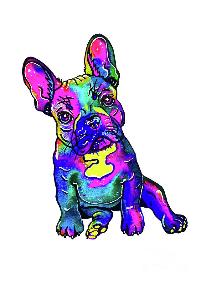 Colorful French Bulldog  by Zaira Dzhaubaeva