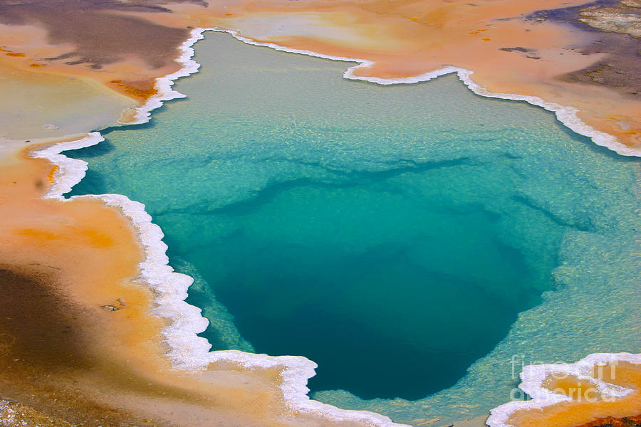 Natural Photograph - Colorful Geyser In Yellowstone National by Csnafzger