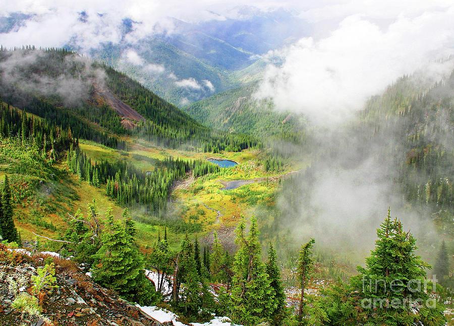 Wilderness Photograph - Mountain Meadow Pond Fog by Robert C Paulson Jr