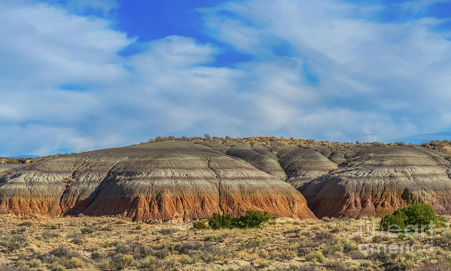 Colorful Hills in the Bisti/de-na-zin Wilderness by Daniel Ryan