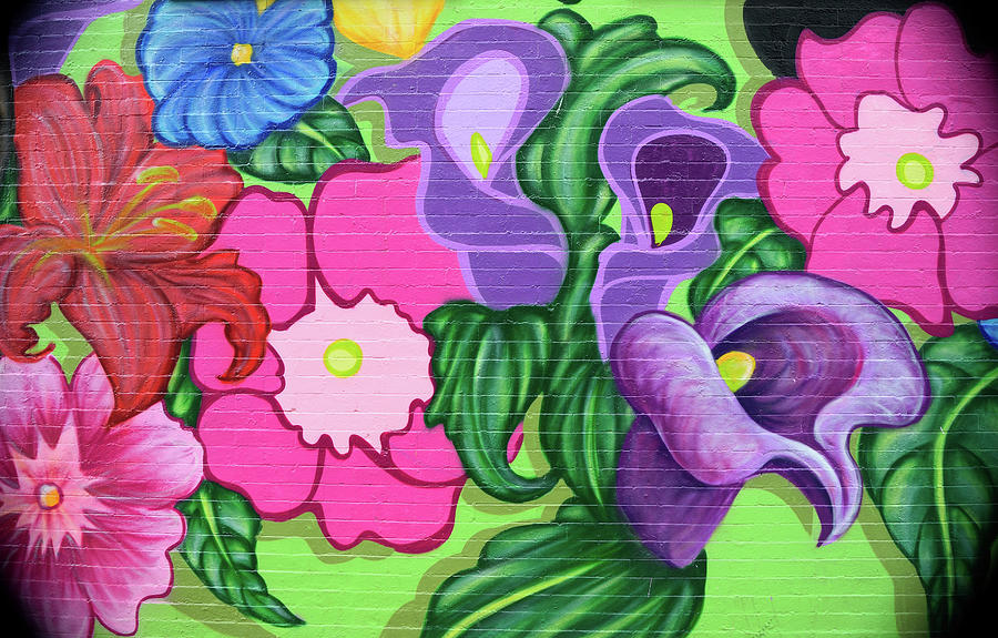 Colorful Mural by Karen Harrison