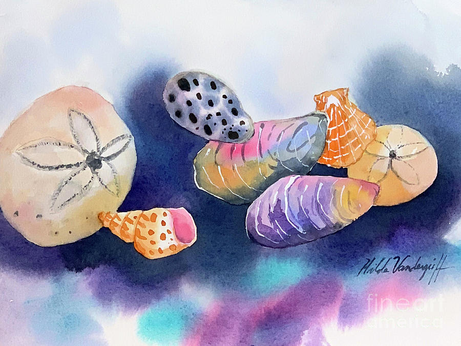 Colorful Sea Shells  by Hilda Vandergriff