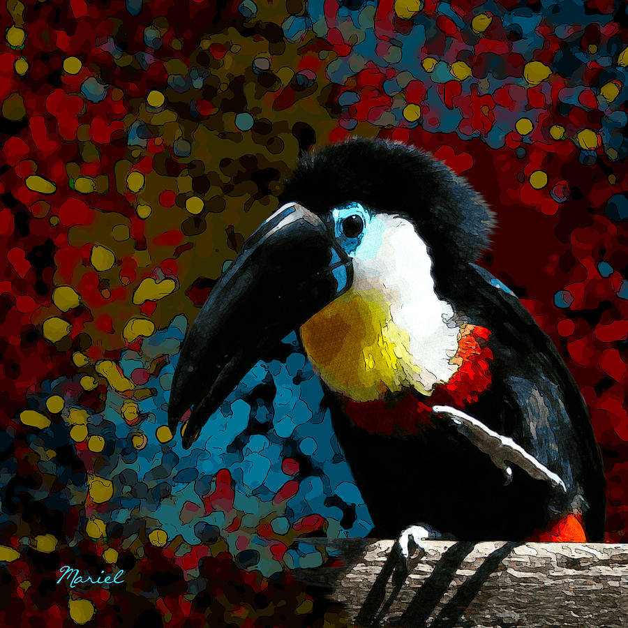 Colorful Toucan by Mariella Wassing