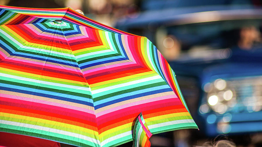 Colorful Umbrella by Jeanette Fellows